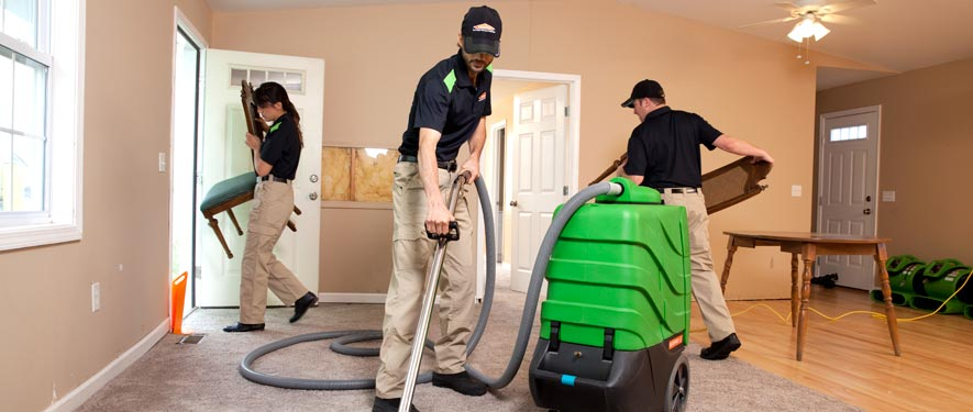 Jasper, AL cleaning services